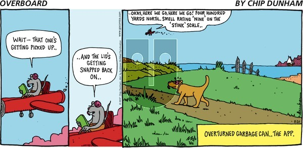 Overboard on Sunday August 20, 2017 Comic Strip