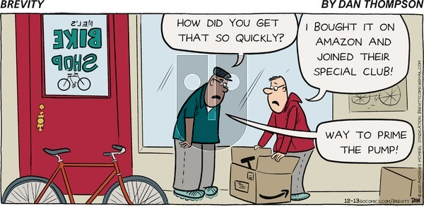 Brevity on Sunday December 13, 2020 Comic Strip