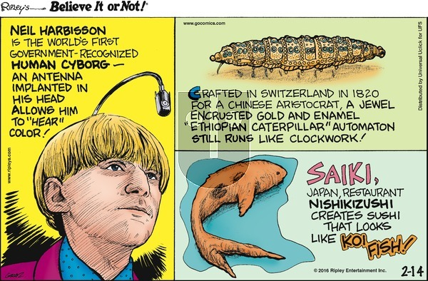 Ripley's Believe It or Not on Sunday February 14, 2016 Comic Strip