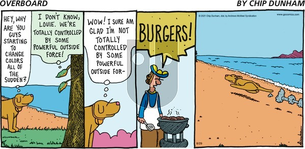Overboard on Sunday August 29, 2021 Comic Strip