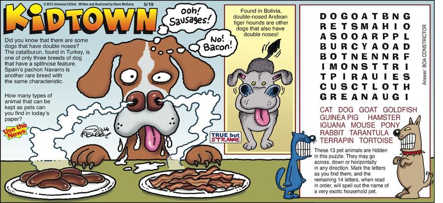 KidTown for May 19, 2013 Comic Strip