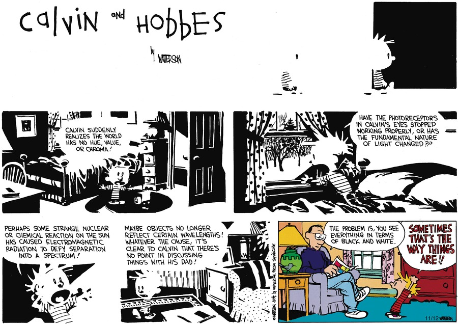 Calvin and Hobbes Comic Strip for February 03, 1991