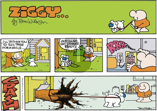 Ziggy on Sunday April 7, 2019 Comic Strip