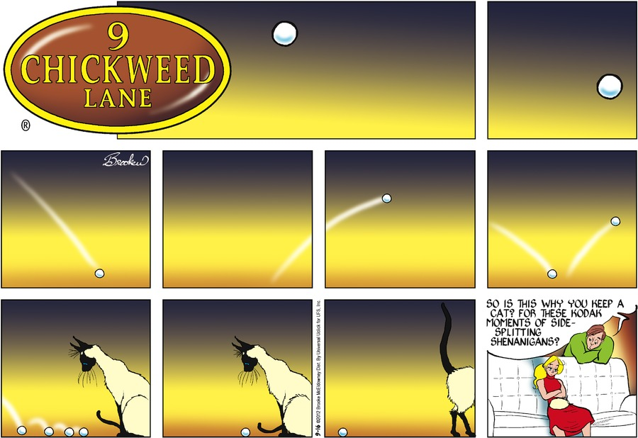 9 Chickweed Lane for Sep 16, 2012 Comic Strip