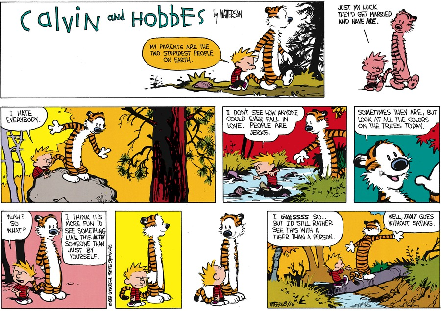 Calvin and Hobbes Comic Strip for October 09, 1988