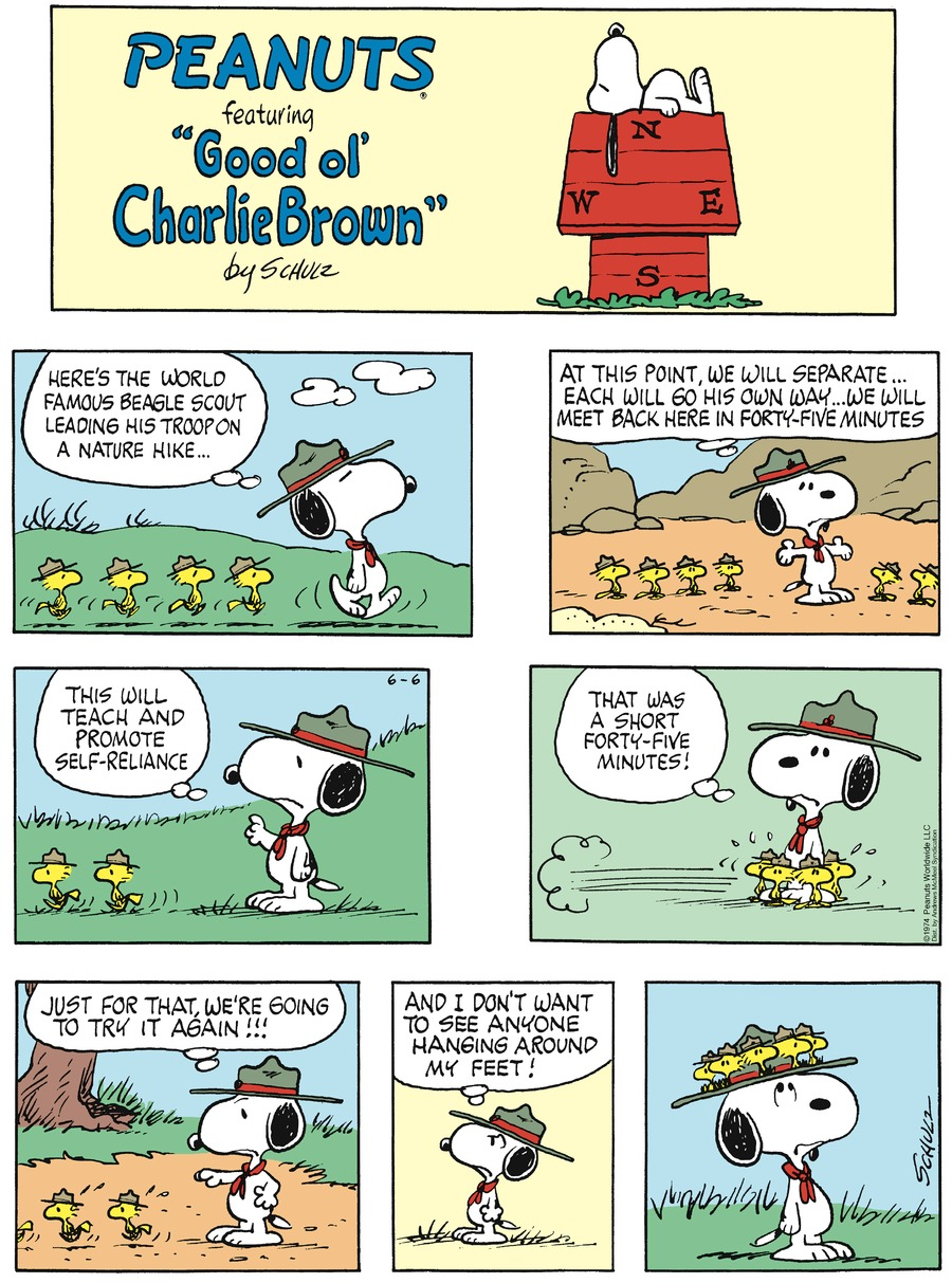 Peanuts by Charles Schulz on Sun, 06 Jun 2021