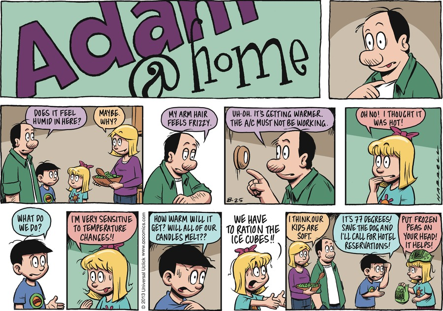 Adam@Home for Aug 25, 2013 Comic Strip