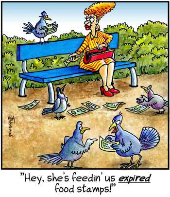 Birdbrains Comic Strip for October 08, 2019