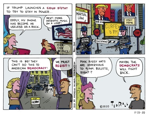 Ted Rall on Sunday November 22, 2020 Comic Strip