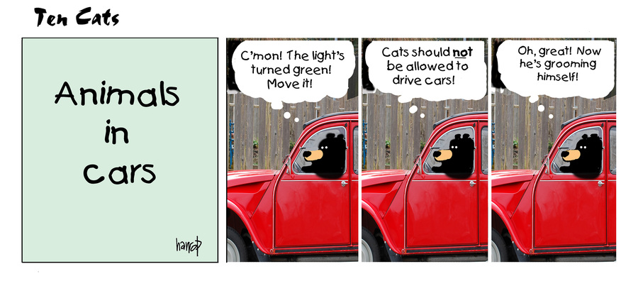 Ten Cats Comic Strip for March 31, 2021