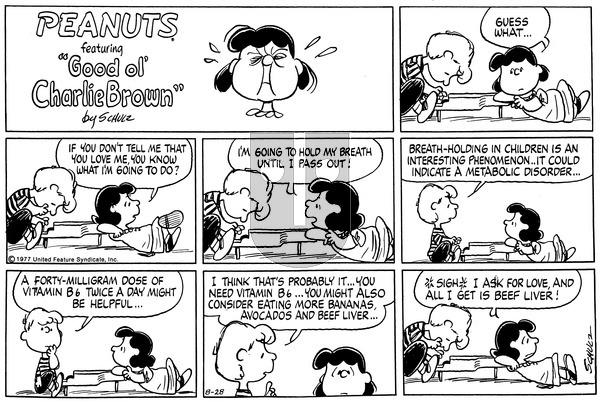 Peanuts on Sunday August 28, 1977 Comic Strip