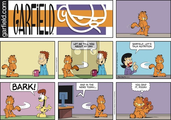 Garfield on Sunday November 11, 2018 Comic Strip