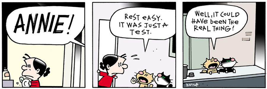 Ten Cats for May 2, 2013 Comic Strip