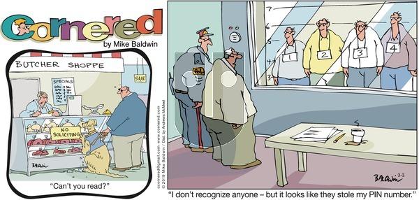 Cornered on Sunday March 3, 2019 Comic Strip