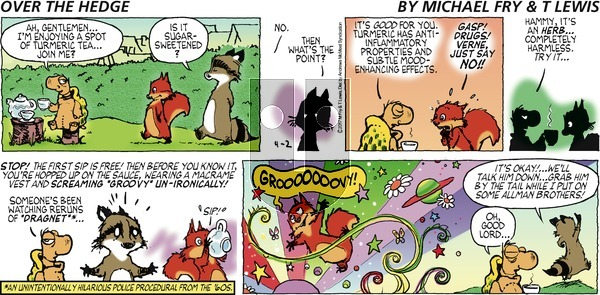 Over the Hedge on Sunday April 2, 2017 Comic Strip
