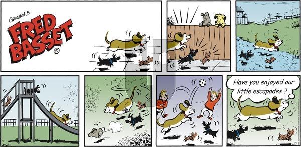 Fred Basset on Sunday May 10, 2020 Comic Strip