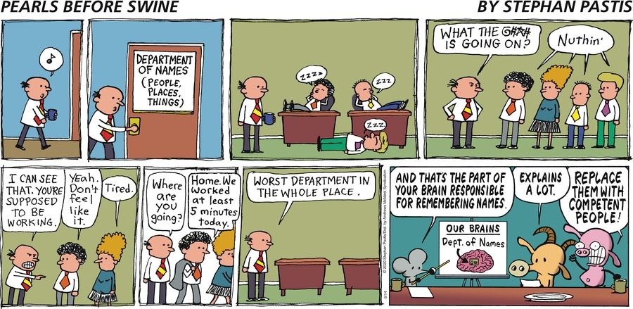 Pearls Before Swine by Stephan Pastis on Sun, 14 Jun 2020