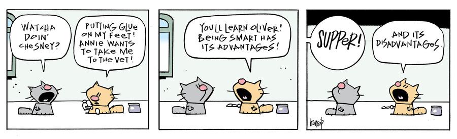 Ten Cats Comic Strip for June 01, 2020