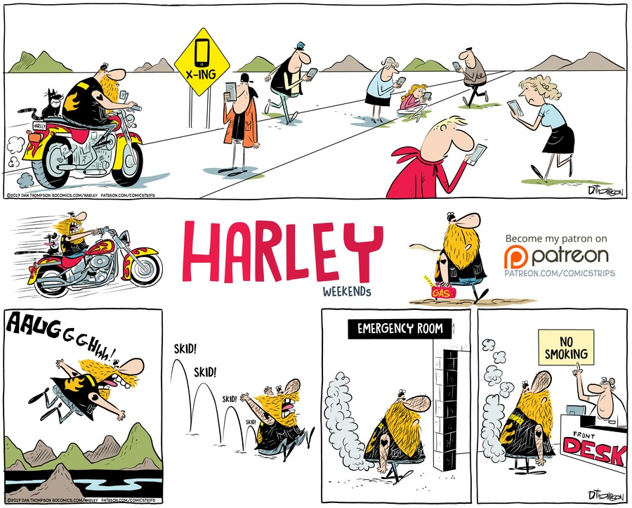 Harley by Dan Thompson on Sun, 03 Oct 2021
