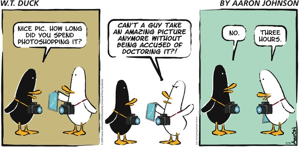 W.T. Duck