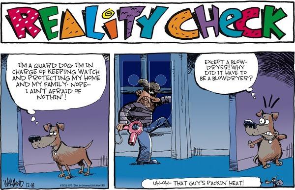 Reality Check on Sunday December 18, 2016 Comic Strip