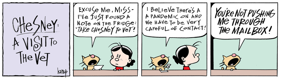 Ten Cats Comic Strip for May 29, 2020