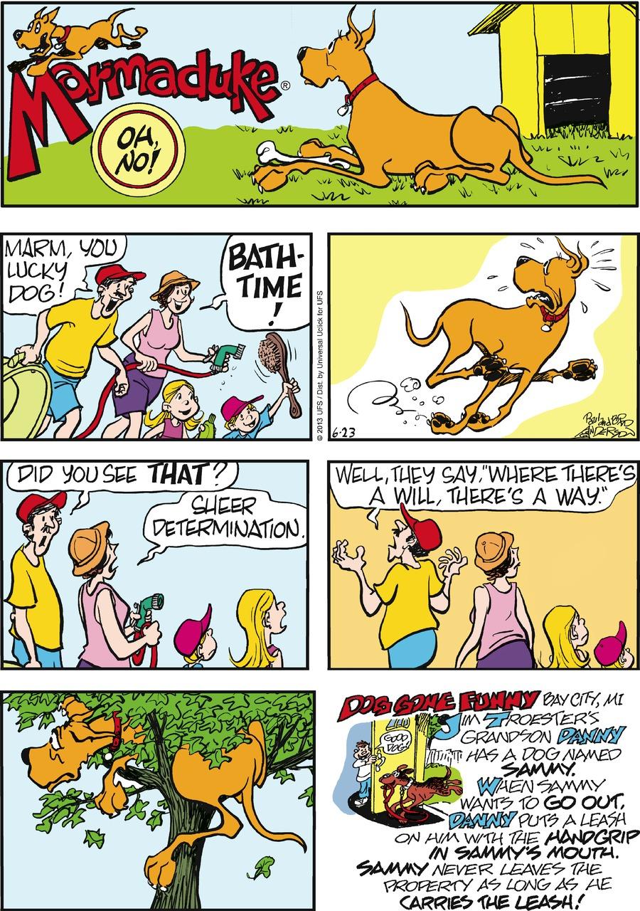 Marmaduke for Jun 23, 2013 Comic Strip