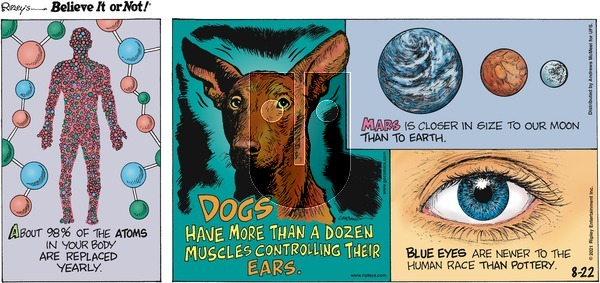 Ripley's Believe It or Not on Sunday August 22, 2021 Comic Strip