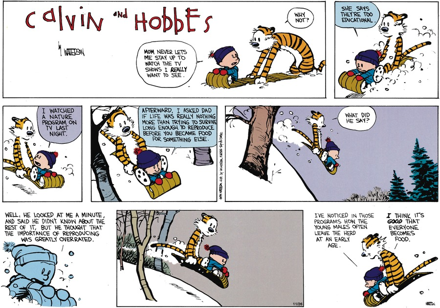 Calvin and Hobbes Comic Strip for February 17, 1991