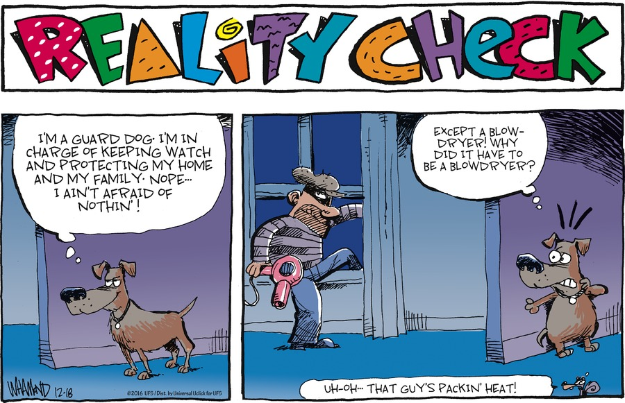 Reality Check for Dec 18, 2016 Comic Strip