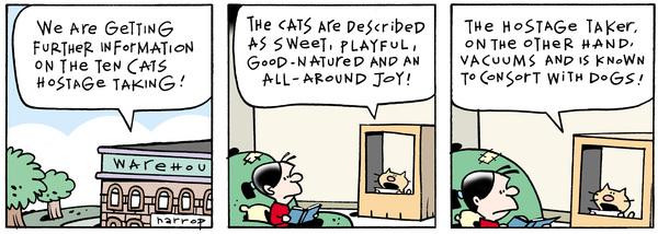Ten Cats