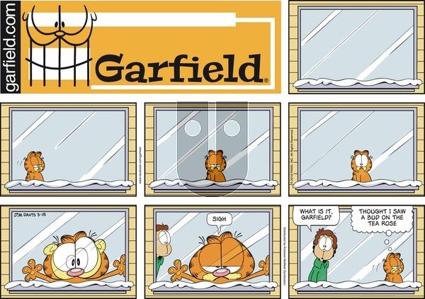 Garfield on Sunday March 18, 2018 Comic Strip