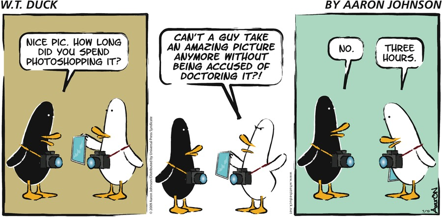 W.T. Duck for May 5, 2013 Comic Strip