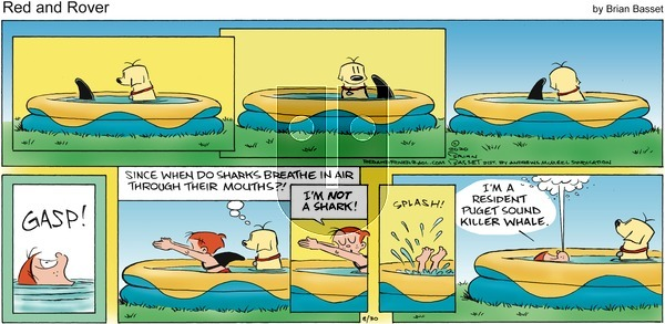 Red and Rover - Sunday August 30, 2020 Comic Strip