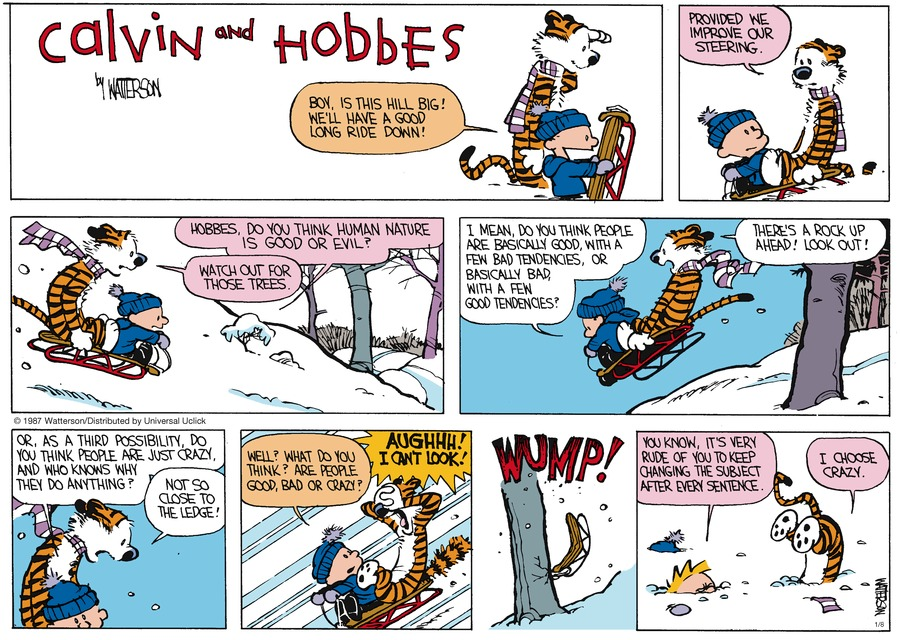 Calvin and Hobbes Comic Strip for January 08, 2017