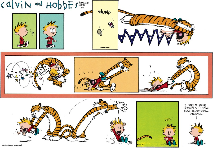Calvin: AAAAAaaaa. I need to make friends with some less territorial animals.
