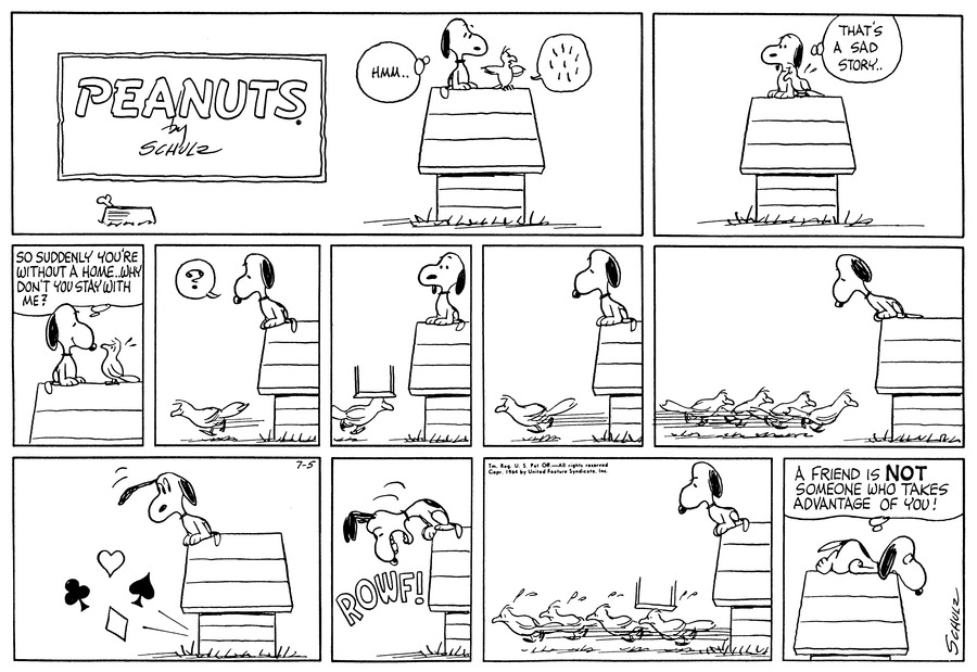 Peanuts Comic Strip for July 05, 1964