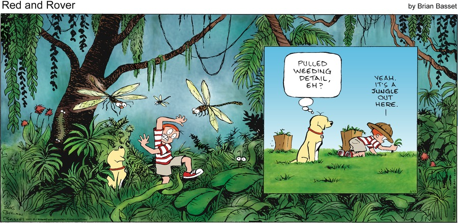 Red and Rover Comic Strip for May 12, 2019