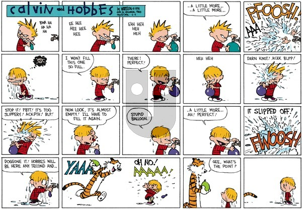 Calvin and Hobbes on Sunday June 11, 1995 Comic Strip