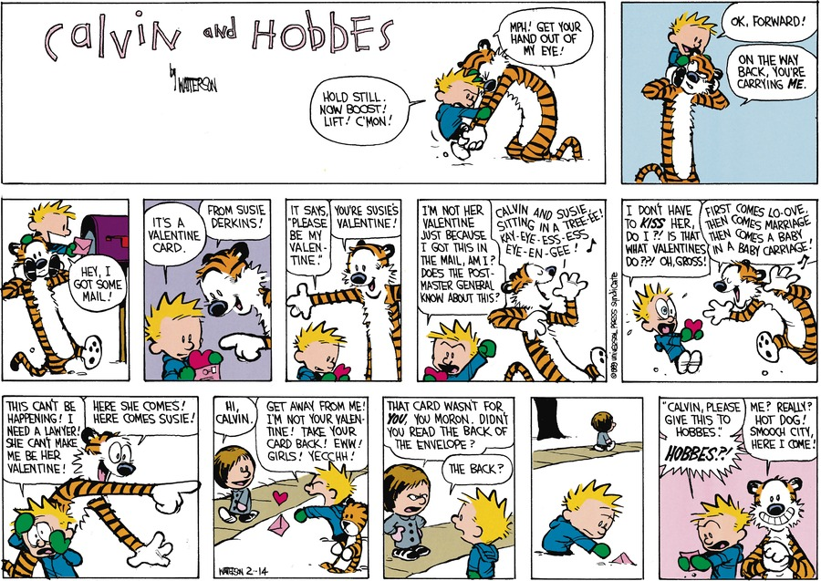 "Calvin: Hold still. Now boost! Lift! C'mon! Hobbes: Mpw! Get your hand out of my eye! Calvin: Ok, forward! Hobbes: On the way back, you're carrying me. Calvin: Hey, I got some mail! It's a valentine card. Hobbes: From Susie Derkins! Calvin: It says, ""Please be my Valentine."" Hobbes: You're Susie's Valentine! Calvin:I'm not her Valentine just because I got this in the mail, am I? Does the postmaster general know about this? Hobbes: Calvin and Susie sitting in a tree-ee! Kay-eye-ess-ess-eye-en-gee! Calvin: I don't have to kiss her, do I?! Is that what Valentines do??! Oh, gross! Hobbes: First comes lo-ove, then comes marriage, them comes a baby in a baby carriage! Calvin: This can't be happening! I need a lawyer! She can' make me be her Valentine! Hobbes: Here she comes! Here comes Susie! Susie: Hi Calvin. Calvin: Get away from me! I'm not your Valentine! Take your card back! Eww! Girls! Yecchh! Susie: That card wasn't for you, you moron. Didn't you read the back of the envelope? Calvin: The back? ""Calvin, please give this to Hobbes."" Hobbes?! Hobbes: Me! Really? Hot dog! Smooch city, here I come!"