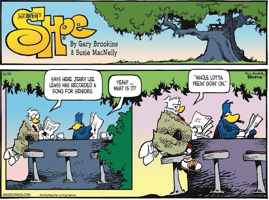 Shoe Comic Strip for November 22, 2020