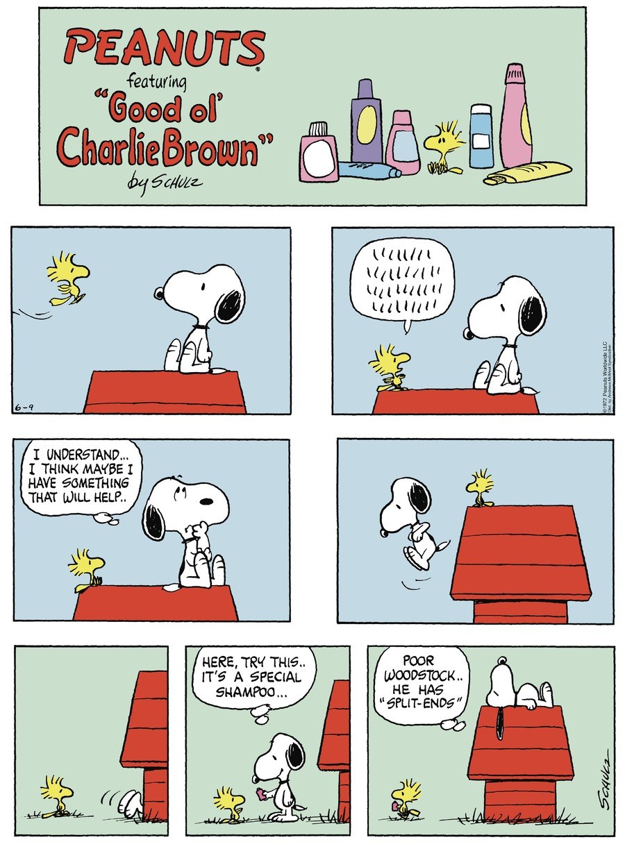 Peanuts by Charles Schulz for June 09, 2019