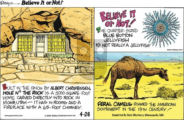 Ripley's Believe It or Not on Sunday April 26, 2020 Comic Strip