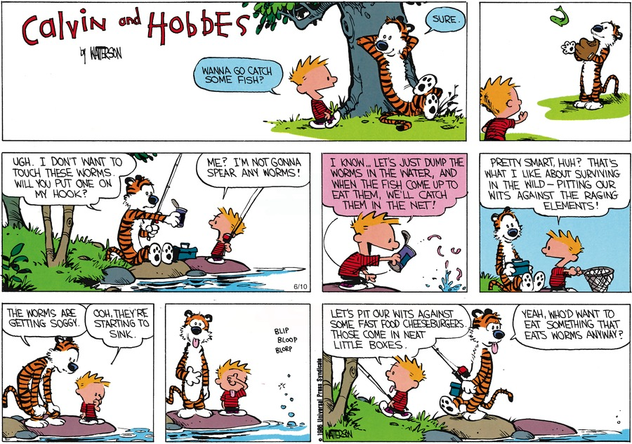 Calvin and Hobbes Comic Strip for May 11, 1986