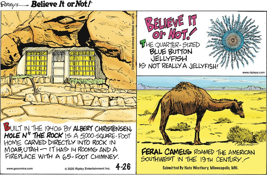 Ripley's Believe It or Not Comic Strip for April 26, 2020