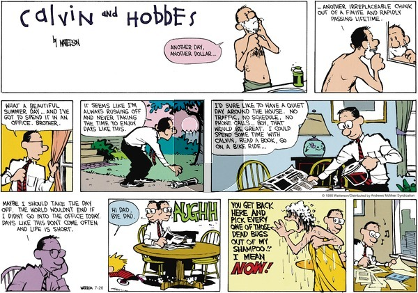 Calvin and Hobbes - Sunday July 26, 2020 Comic Strip