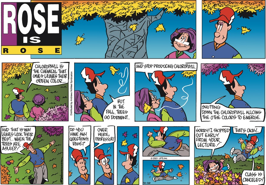 Rose is Rose by Don Wimmer and Pat Brady on Sun, 10 Oct 2021