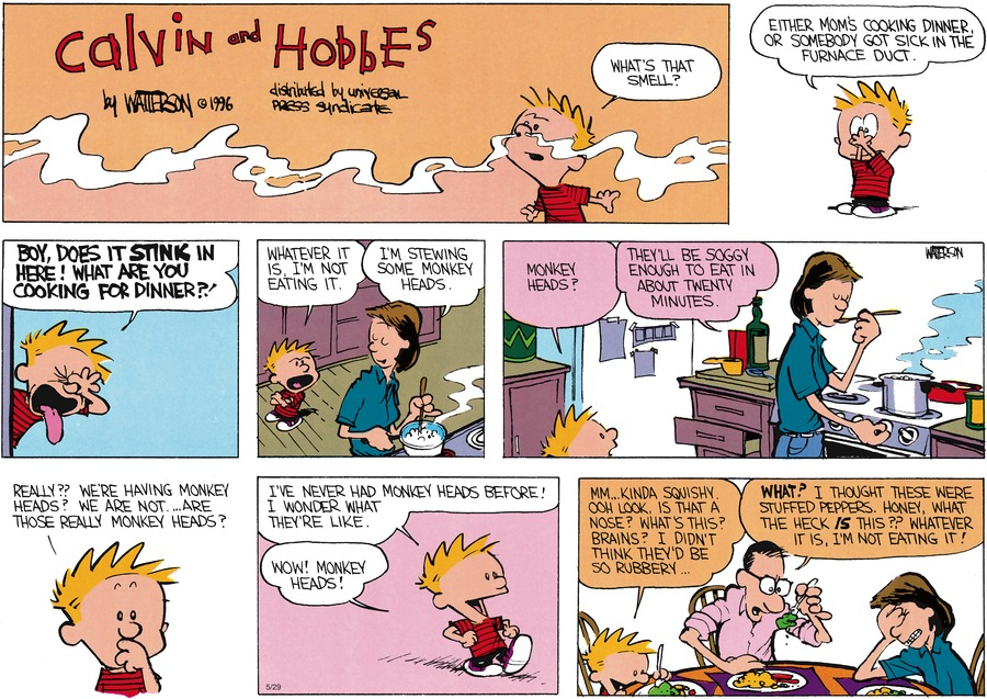 Calvin and Hobbes Comic Strip for May 29, 2016