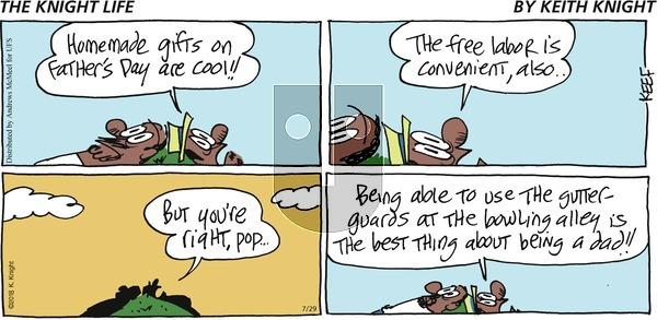 The Knight Life on Sunday July 29, 2018 Comic Strip