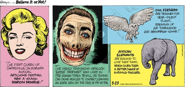Ripley's Believe It or Not on Sunday May 23, 2021 Comic Strip